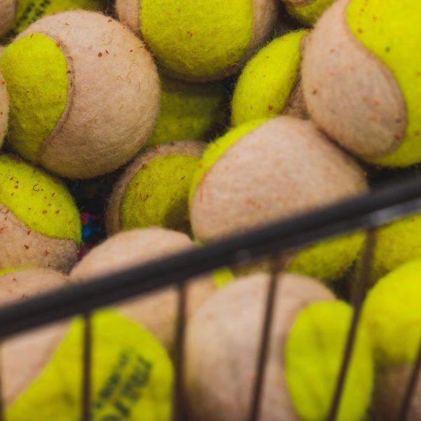 les_amis_tennis-2