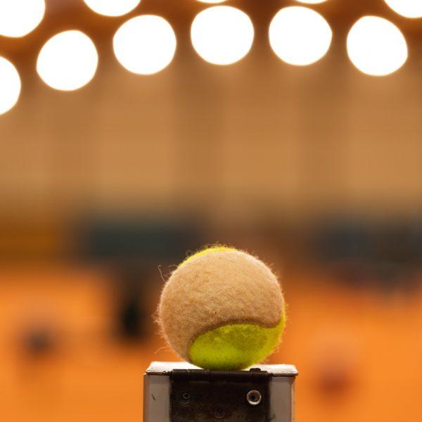 les_amis_tennis-4